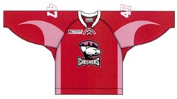 Charlotte Checkers pink jersey